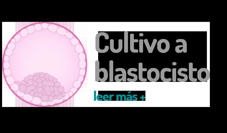 Inicio - Live in vitro